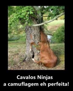 cavalos ninja 3