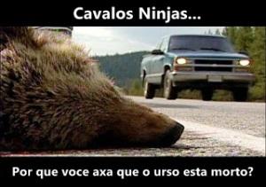 dead-bear o